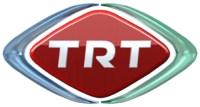 TRT World seeks fellows